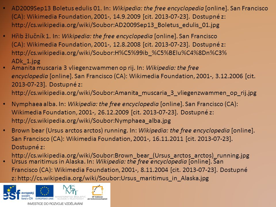 AD2009Sep13 Boletus edulis 01. In: Wikipedia: the free encyclopedia [online]. San Francisco (CA): Wikimedia Foundation, 2001-, 14.9.2009 [cit. 2013-07-23]. Dostupné z: http://cs.wikipedia.org/wiki/Soubor:AD2009Sep13_Boletus_edulis_01.jpg